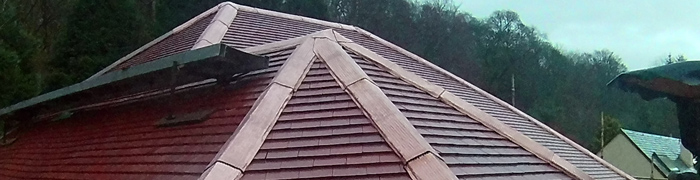 Copper King protects and enhances any roof